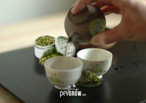 Comment préparer une infusion de cannabis