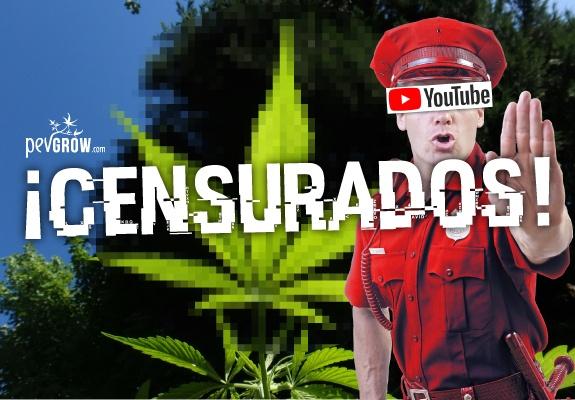 Youtube empieza a suspender los canales relacionados con la marihuana