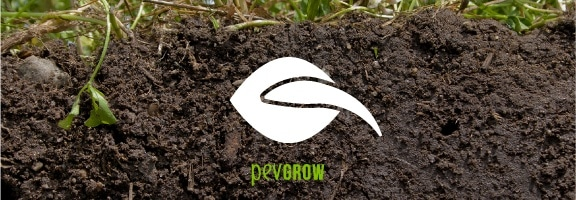 The most commonly used method of germinating is soil.