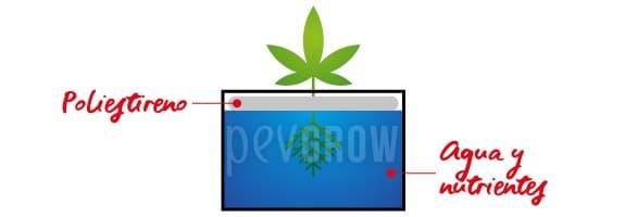 El cultivo acuático consiste en suspender las plantas