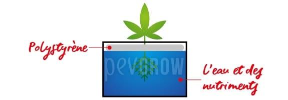 La culture aquatique consiste à suspendre les plantes