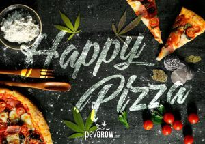 Cómo hacer una pizza de marihuana