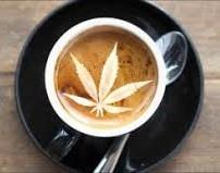 Café au lait et cannabis