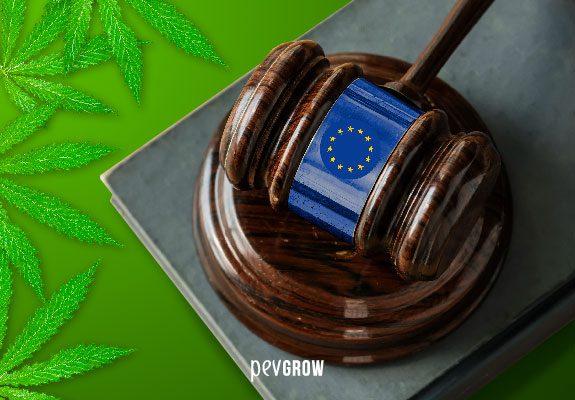 Situación legal de la comercialización de productos elaborados con CBD