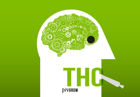 Different effects THC has on your body