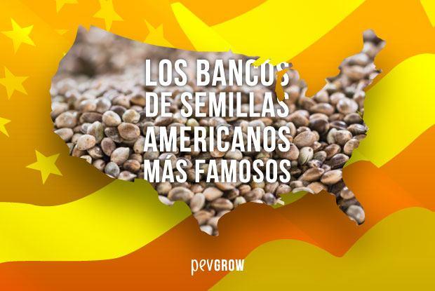 Bancos de semillas americanos famosos