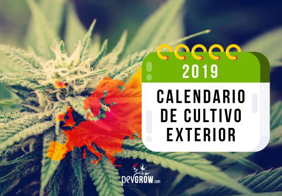 Calendario Lunar Cannabico 2019 Espana.Calendario 2019 Cultivo Exterior Norte Y Sur De Europa