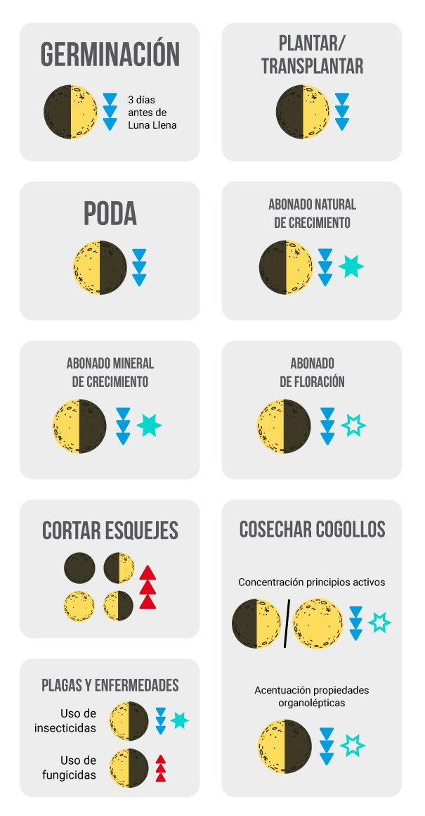 Calendario Lunar Cannabico 2019 Espana.Calendario Lunar Cannabico 2019 Ayuda A Tus Plantas