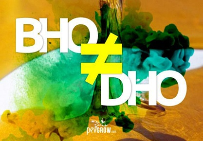 Differences between BHO and DHO