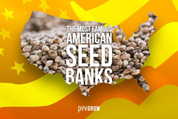 Well-known American seed banks