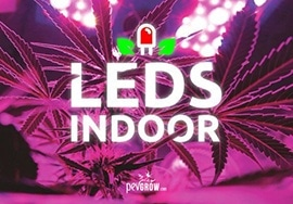 Here my good experience with Leds in Indoor