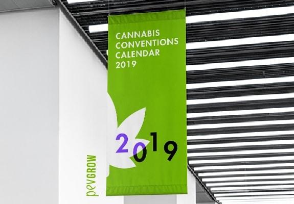 The 2019 Marijuana Conventions