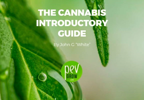The Cannabis introductory guide - Pevgrow
