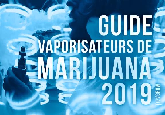 Meilleurs vaporisateurs de cannabis 2019