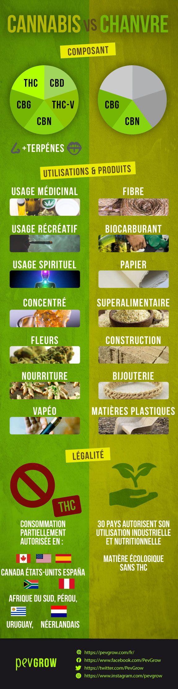 Différences entre le chanvre et le cannabis