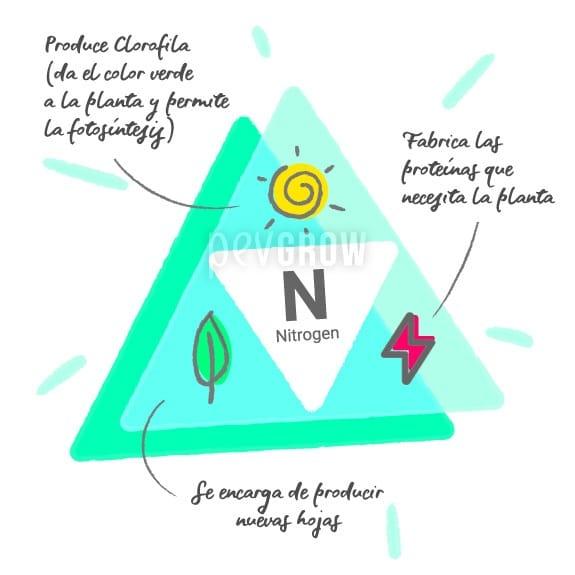 Gráfico que muestra las propiedades que proporciona el nitrógeno: produce clorofila (da el color verde a la planta y permite la fotosíntesis), fabrica las proteínas que necesita la planta y se encarga de producir las hojas nuevas.