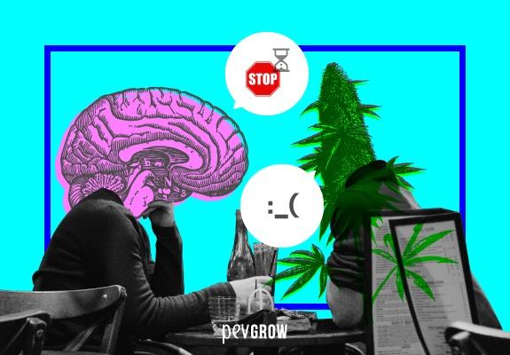 Image recréant un consommateur face à un organisme ayant un visage de plante de cannabis