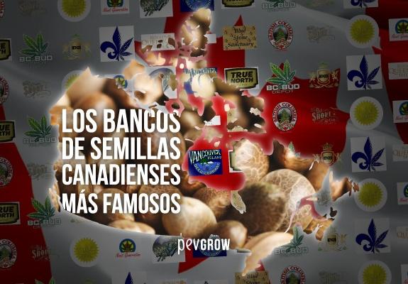 Los bancos de semillas canadienses más famosos