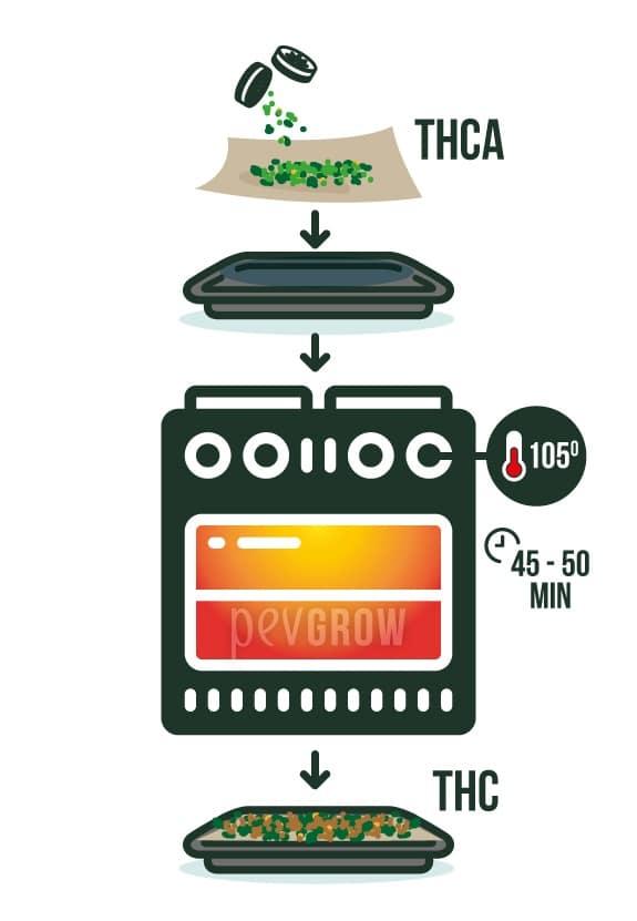Image avec les étapes de décarboxylation du cannabis dans le four