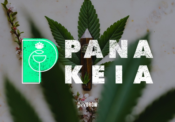 Panákeia, Cannabis con alto CBG y nada de THC