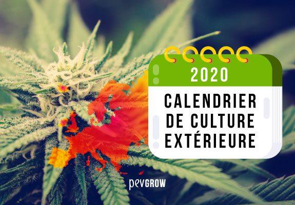 Calendrier 2020 Culture à l'extérieur Europe du Nord et du Sud