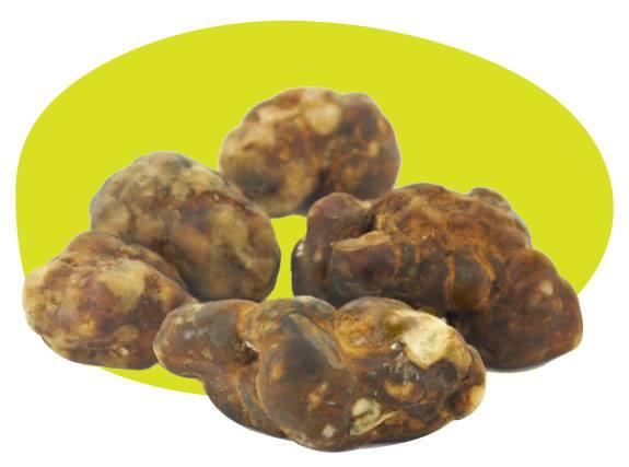 Immagine che mostra tartufi magici freschi pronti per la vendita *