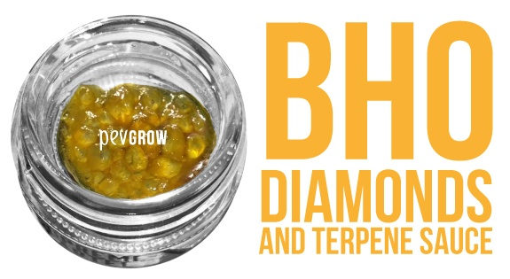 Image showing a pot with diamonds and terpene sauce*