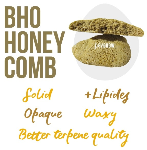 Photo of a large piece of BHO Honey Comb ready to eat*