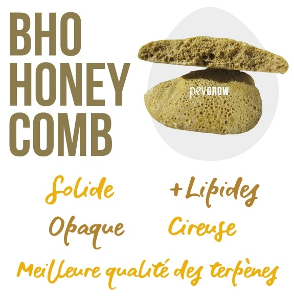 Photo d'un gros morceau de BHO Honey Comb prêt à consommer*