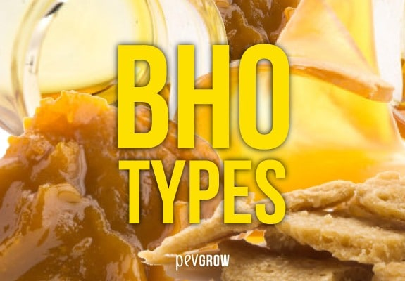 Different BHO finishes. Get to know them!