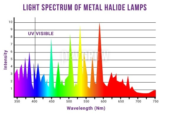Graph representing the spectrum of light emitted by Metal Halide lamps*