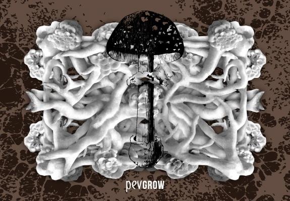 Image représentative du mycélium, avec un champignon au milieu d'un ensemble de racines