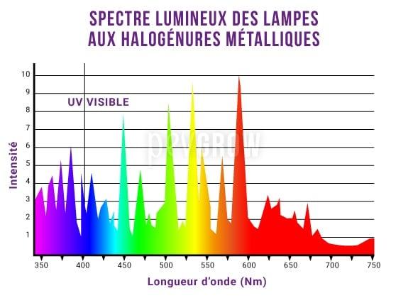 Graphique représentant le spectre de la lumière émise par les lampes aux Halogénures Métalliques*