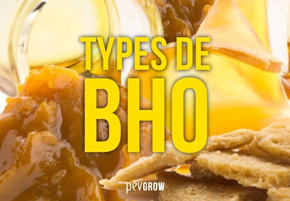 Image de différentes textures BHO