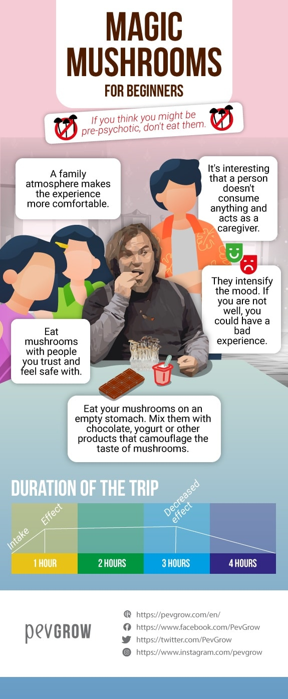 Infographic that represents the requirements to enjoy a magic mushroom trip being a beginner*