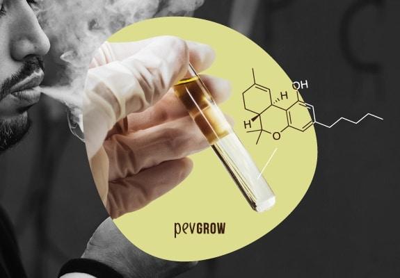 Imagen de una mano con guante sosteneidno un tubo de ensayo con liquido, supuestamente marihuana sintetica