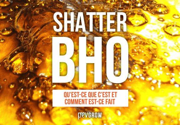 Qu'est-ce que le Shatter BHO et comment est-il fait
