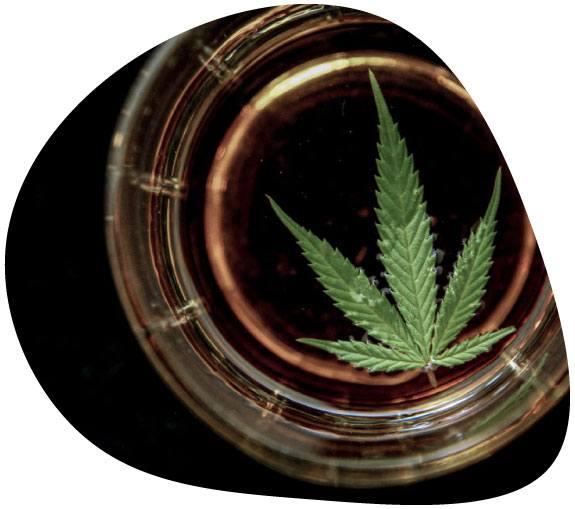 Imagen donde se ve un vaso de licor de marihuana*