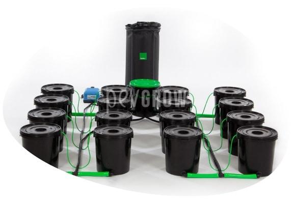 Imagen de un sistema hidropónico DWC para 12 plantas*