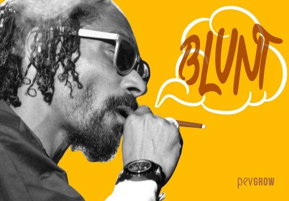Imagen de Snoop Dogg fumando un porro Blunt