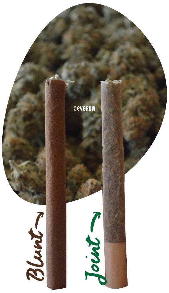 Photograph showing the difference between a regular joint and a Blunt
