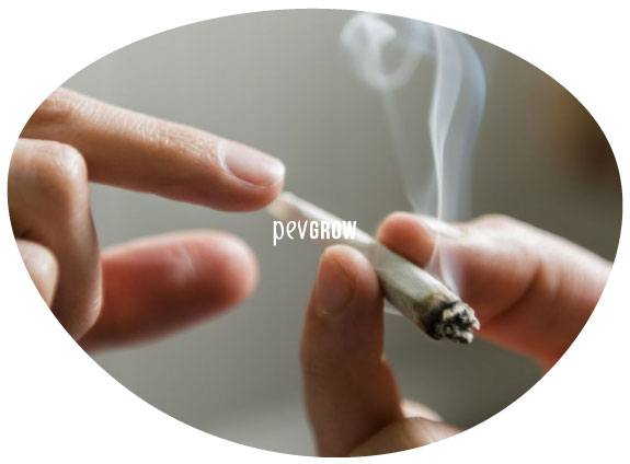 Image of a joint being passed around during the Russian Roulette game*