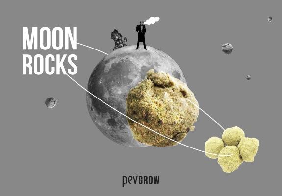 Moonrocks, la marihuana más potente del mundo