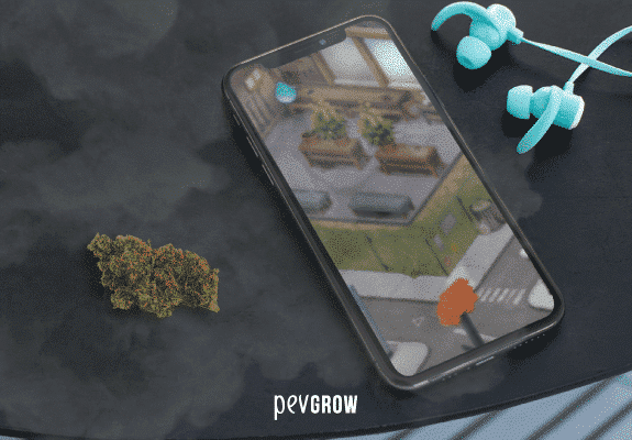 Picture of a mobile phone on a table next to a bud showing on its screen a game about cannabis.