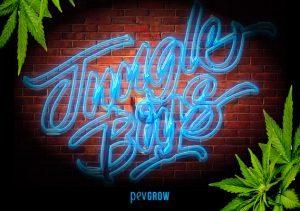 Jungle Boys, histoire, variétés et dispensaires des producteurs impériaux d'Instagram