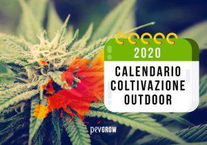 Calendario 2020 Coltivazione Outdoor Nord e Sud Europa