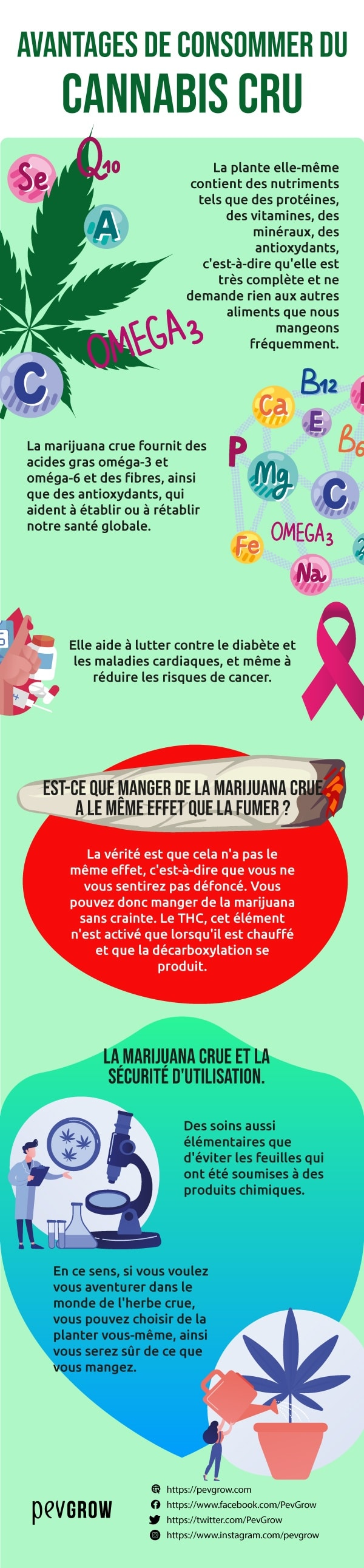 Manger du cannabis vous aide à améliorer votre santé