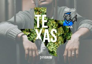 Cannabis Laws in Texas, What can and can't be done?
