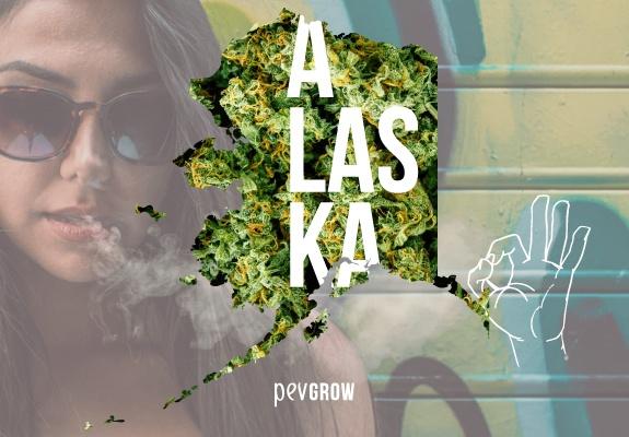 Mapa de Alaska con un fondo de plantas de marihuana