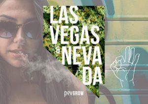 ¿Es legal el cannabis recreativo y la marihuana medicinal en Las Vegas y el estado de Nevada?